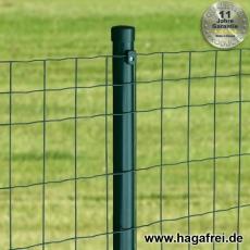 Zaunset Deko-Gitterzaun WEND grün 100X50X2,5mm Rundpfosten