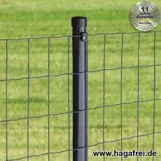 Zaunset Deko-Gitterzaun EUPLA anthr. 100X50X2,5mm Rundpfosten